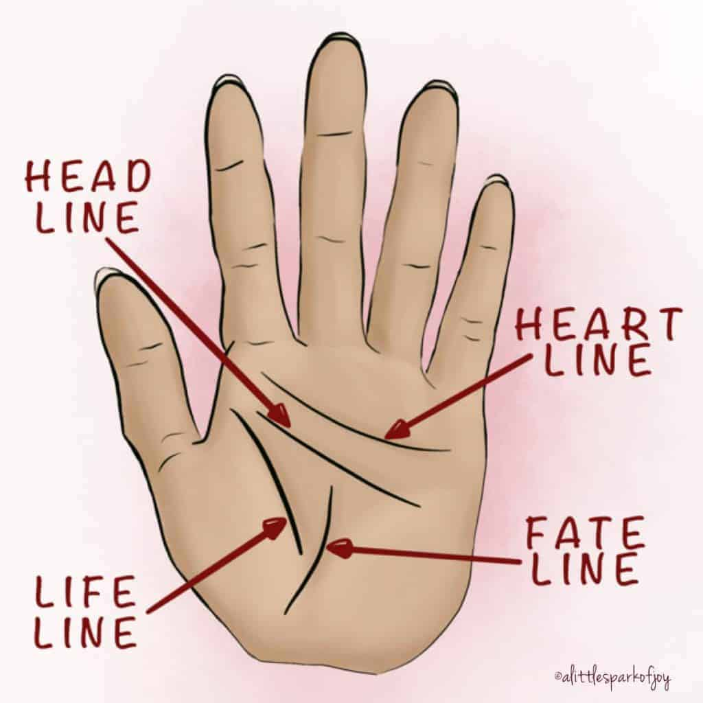 palm reading lines