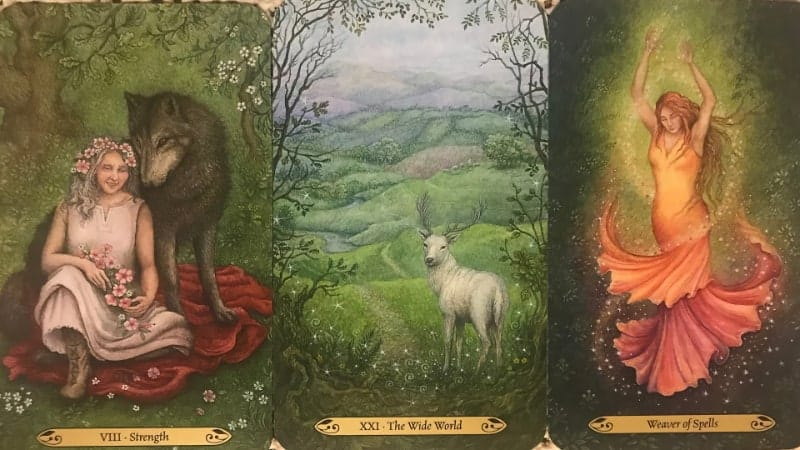 the forest of echantment tarot cards example