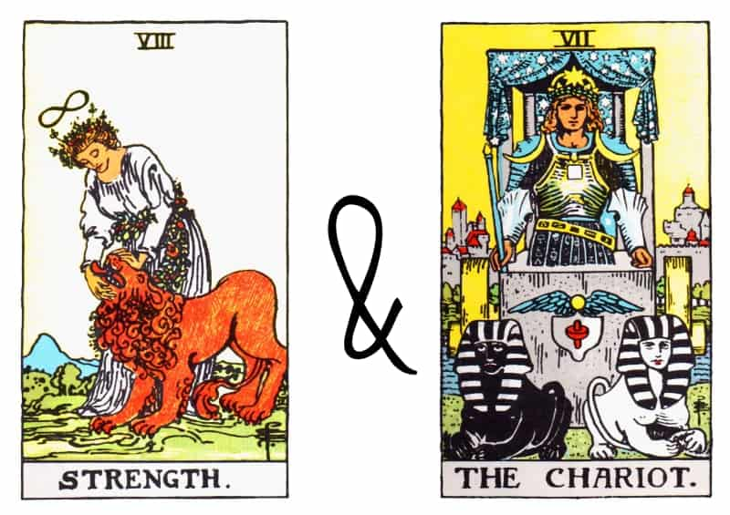 strenght the chariot card combination tarot